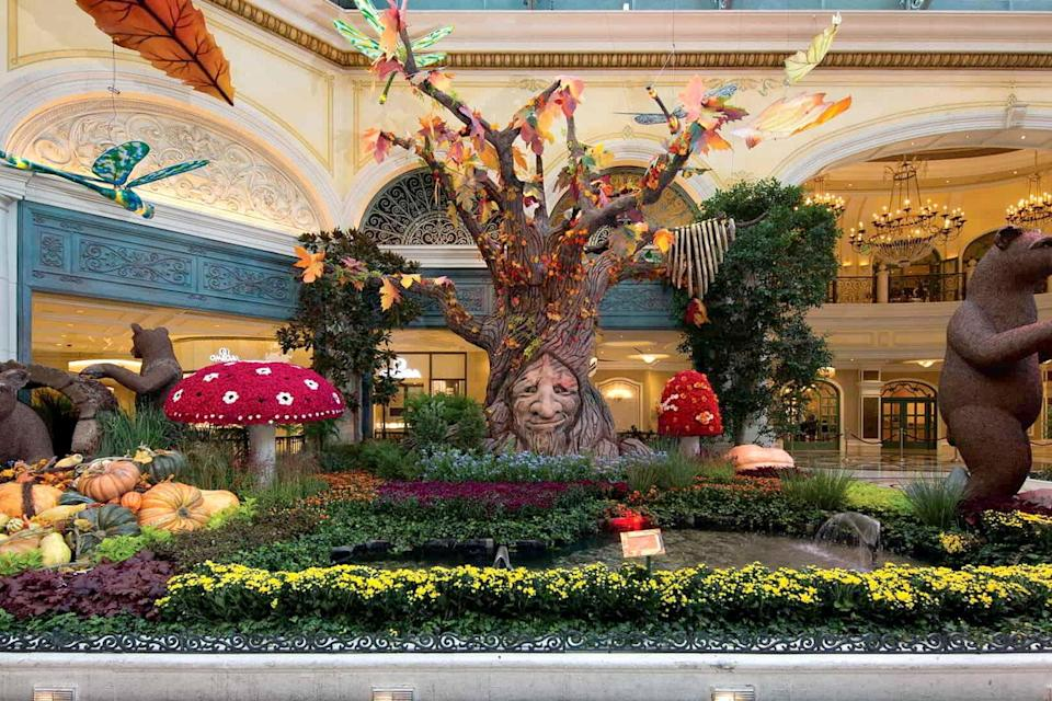 "<p><strong>Let's start big picture here.</strong> The airy central conservatory, which opens up right as you enter <a href=""https://www.cntraveler.com/hotels/united-states/las-vegas/bellagio-las-vegas?mbid=synd_yahoo_rss"" rel=""nofollow noopener"" target=""_blank"" data-ylk=""slk:Bellagio"" class=""link rapid-noclick-resp"">Bellagio</a>, was inspired by the verdigris framework of Art Nouveau conservatories of <a href=""https://www.cntraveler.com/destinations/paris?mbid=synd_yahoo_rss"" rel=""nofollow noopener"" target=""_blank"" data-ylk=""slk:Paris"" class=""link rapid-noclick-resp"">Paris</a>. Despite the fact that Las Vegas sits smack in the middle of the Mojave Desert, you can see the changing seasons in all their glory when the Bellagio Conservatory & Botanical Garden transforms five times per year with fresh flowers; towering animatronic butterflies and birds; burbling fountains and bobbing lanterns. Each of its seasonal ""theatrical presentations"" of the elements is totally new. You'll never see the same things twice. And each is more transporting than the last. It's free, requires no effort to navigate (unless you're trying to elbow your way through all the smartphone-wielding selfie-takers). It's an absolute feast for the eyes: locals love it as much as tourists, and it's one of the top free attractions in the city.</p> <p><strong>Any standout features or must-sees?</strong> Each season, its 120 horticulturalists, engineers, and designers create displays with more than 10,000 flowers, which are switched out every two weeks. You'll never see the same thing again, but past examples included a Lunar New Year to celebrate the rat (a symbol of prosperity), with displays that included 32,000 flowers among the Conservatory's four beds (West, East, North, and South), as well as a koi pond, two 20-foot-high jade medallions, an ornate pagoda guarded by two animatronic lion dancers, and five giant gold rats pushing a golden cart and dancing up a staircase between two golden money trees. In other words, expect the unexpected.</p> <p><strong>Was it easy to get around?</strong> The Conservatory is simple to navigate: the moment you enter Bellagio's front door, you'll see its 50-foot-high, skylit interior before you. It's a rectangular shape, bordered by stores and restaurants, so it's impossible to get lost. It's also very accommodating for those with mobility issues, with flat pathways and the occasional ramp.</p> <p><strong>All said and done, what—and who—is this best for?</strong> Even though Bellagio Conservatory is free, and therefore an automatic draw in this city, the attraction is so over the top it feels like a must-see, even if you're on the spendiest trip of your life. Kids love it, adults love it, influencers love it (a little too much). Each season is more magical than the last, so it's perfect for everyone. It's also centrally located, so an easy attraction to reach on your way to or from other things you might be doing in Las Vegas during the day or night. And because it's an open botanical garden, it never closes—except for the occasional middle-of-the-night seasonal change-up.</p>"