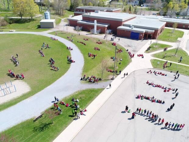 Hundreds of students stood in a field to watch the big reveal of the mural.