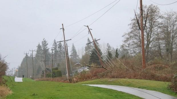 In Langley, a tree fell fell during the windstorm and took down wires and poles on the Langley Lane Greenway. Thousands of people across the Lower Mainland were without power on Sunday. (Shane MacKichan - image credit)