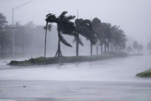 <p><strong>Naples</strong><br>The winds from Hurricane Irma blow palm trees as it approaches Naples, Fla., Sept. 10, 2017. (Photo: David Goldman/AP) </p>