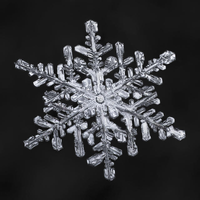 <p>Each snowflake photo takes roughly four hours to edit to ensure perfect details. (Photo: Don Komarechka/Caters News) </p>