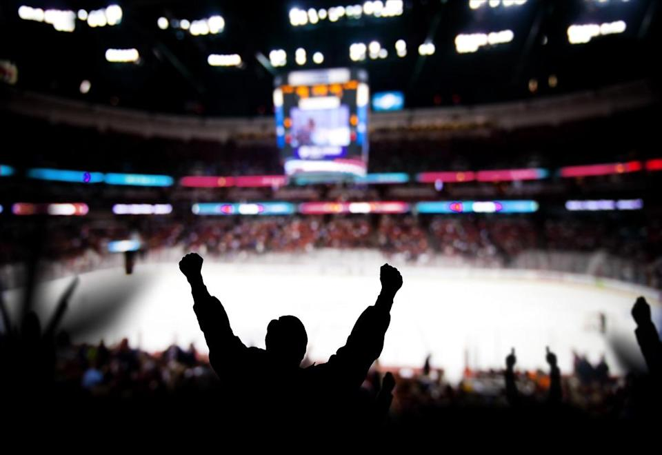 Fans celebrating at a hockey game/winter game
