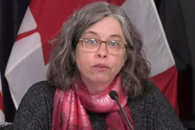 Chief Medical Officer of Health Dr. Janice Fitzgerald says getting a vaccine is the 'best chance' at returning to pre-COVID life.  (Government of Newfoundland and Labrador - image credit)