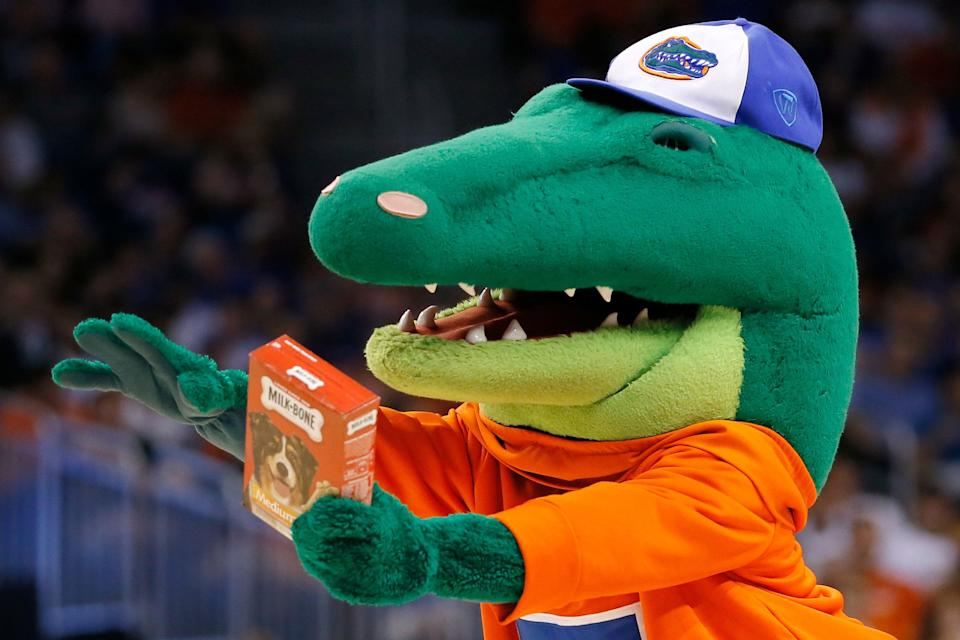 ORLANDO, FL - MARCH 20:  The Florida Gators mascot holds a pack of Milk-Bone dog treats for the Albany Great Danes mascot during the second round of the 2014 NCAA Men's Basketball Tournament at Amway Center on March 20, 2014 in Orlando, Florida.  (Photo by Kevin C. Cox/Getty Images)