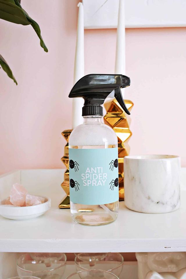 "<p>If your house has an infestation of spiders and you want a less harmful way to ward off the eight-legged critters, this <product href=""http://abeautifulmess.com/anti-spider-spray-essential-oil-based/"" target=""_blank"" class=""ga-track"" data-ga-category=""Related"" data-ga-label=""http://abeautifulmess.com/anti-spider-spray-essential-oil-based/"" data-ga-action=""In-Line Links"">anti-spider spray</product> is it. It's made of essential oils, water, and a little dish soap, and it works like a charm! </p>"
