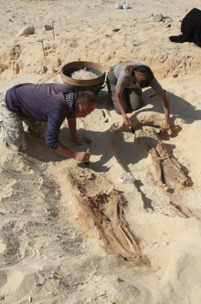3,300-Year-Old Egyptian Cemetery Reveals Commoners' Plight