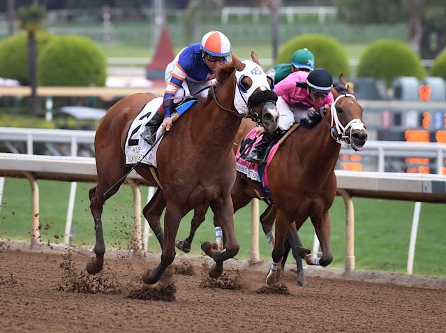Santa Anita is facing more calls to close its track after two horses died over the weekend. (Photo by Mark Ralston/Getty Images)