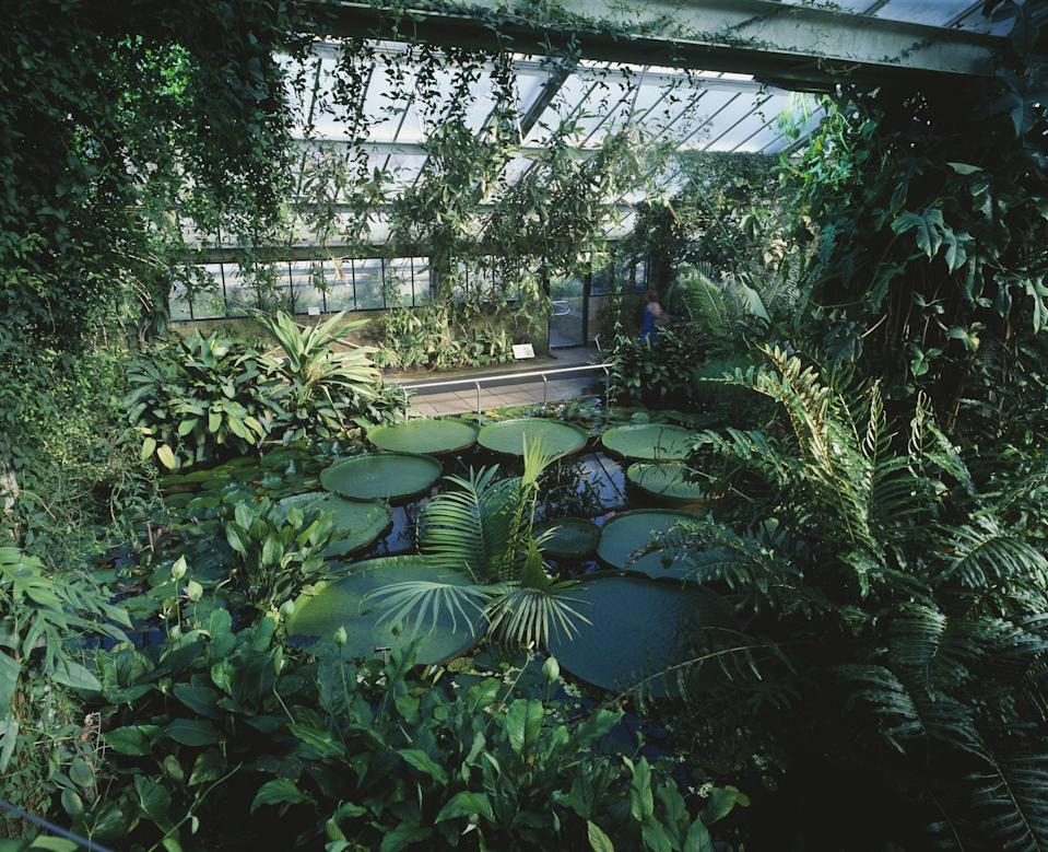 "<p><strong>From Kew Gardens to Chatsworth House, some of the best UK <a href=""https://www.housebeautiful.com/uk/garden/designs/a495/garden-design-ideas/"" rel=""nofollow noopener"" target=""_blank"" data-ylk=""slk:gardens"" class=""link rapid-noclick-resp"">gardens</a> are packed with brilliant blooms, woodland walks, head-turning plants, and historic sculptures. With more of us staying home this summer, why not add one of the country's greatest gardens to your must-visit list?</strong></p><p>'There are hundreds of beautiful public gardens to visit across the UK. Now is a great time to get out and explore all the beauty these gardens have to offer and get some ideas for giving your own outside space a new look,' say the team at <a href=""https://go.redirectingat.com?id=127X1599956&url=https%3A%2F%2Fwww.gardeningexpress.co.uk%2F&sref=https%3A%2F%2Fwww.housebeautiful.com%2Fuk%2Fgarden%2Fg33467236%2Fuk-gardens%2F"" rel=""nofollow noopener"" target=""_blank"" data-ylk=""slk:Gardening Express"" class=""link rapid-noclick-resp"">Gardening Express</a>. </p><p>Looking for gardens to visit? Before you hop in the car for a day trip, remember to check current regulations, opening times, and vital information such as whether you need a mask or to pre-book. </p><p>Make the most of the summer and explore these breathtaking sights right here in the UK...<br></p>"