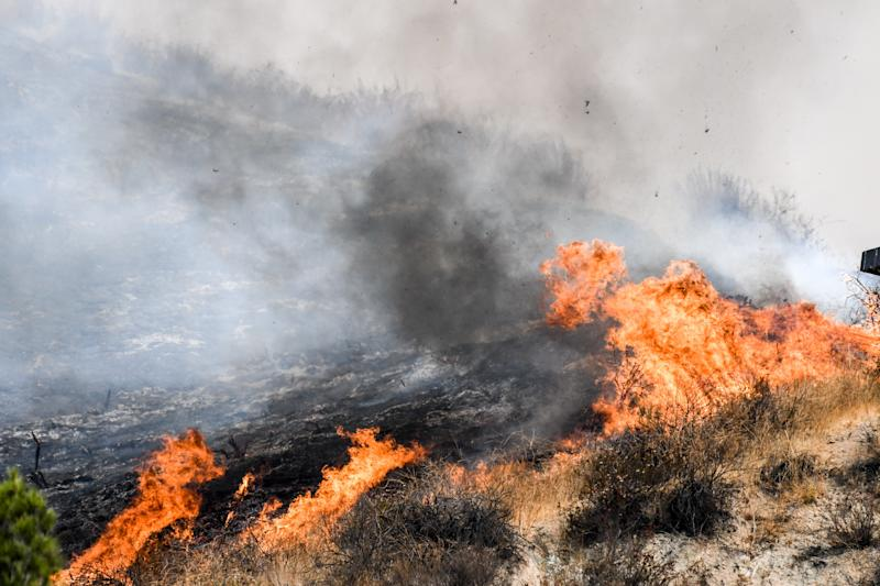 A brushfire believed to be one of the largest in the history of the city of Los Angeles has scorched some 7,000 acres of land in California, destroyed four homes and prompted Gov. Jerry Brown to declare a state of emergency.