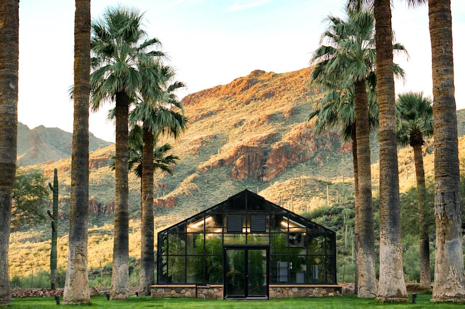 <p><strong>What was it like to arrive at this hotel?</strong> The final 10 miles of the 50-mile drive north from the Phoenix airport to Castle Hot Springs follows a dusty, boulder-filled road that, when the summer monsoons rip through, can go from sandy way to rushing river in minutes. It's like you've landed on the set of a John Wayne movie. There are wild burros on the side of the dirt road—descendants of donkeys set loose in the 1890s after the gold and copper mines in the Bradshaw Mountains went bust. There are steep canyons dense with Saguaro, a cactus that only grows in the Sonoran Desert and whose individualized arm positions make it impossible not to anthropomorphize (there's a disco dancer, that one's doing King Tut). The driveway into the resort is lined with every imaginable type of citrus tree and seeing the main lodge—a lemon yellow, almost victorian-feeling building—you can't help but feel like you've gone back in time to some sort of dessert oasis, a respite for passengers traveling by stage coach. A closer look reveals modern, mid-century-esque bungalows. There is an overwhelming sense of being far, far away. Of slowing down. Of going back in time.</p> <p><strong>What's the backstory?</strong> This place has a wild backstory. The hotel first opened in 1896, as Arizona's first wellness retreat. Before that, the indigenous Yavapati journeyed here to bathe in the property's mineral-rich hot springs. And in the early 20th century, America's industrial elite, the Roosevelts, Wrigleys, and Astors wintered here, taking the waters, horseback riding, and sun bathing. After WWII, the U.S. Government leased the property and turned it into a convalescent retreat for wounded soldiers. JFK spent time here recovering. It then went back to being a resort for wealthy sun seekers and it would have kept on as such if a fire hadn't shuttered the resort in 1976, leaving the springs for trespassing, skinny-dipping teens. Now, fifty years since it saw its last paying guest