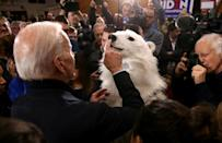 Democratic presidential candidate former Joe Biden taps the nose of a person in a polar bear costume during a campaign event in New Hampshire; the United States' future participation in the Paris climate accord rests on the 2020 election