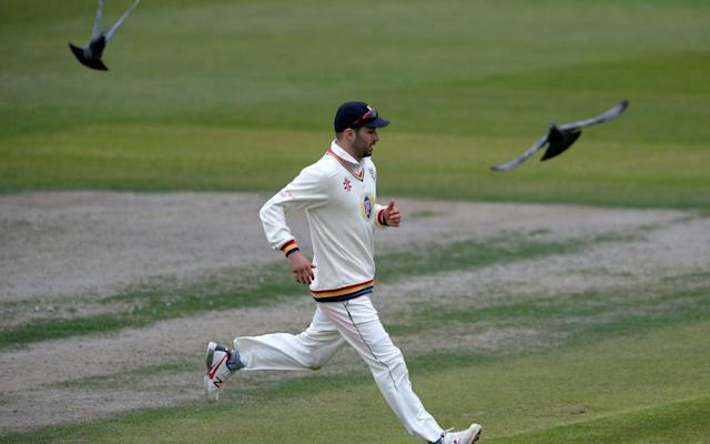 Mark Wood of Durham runs as birds fly past nearby during the County Championship match between Gloucestershire and Durham on Monday - Getty Images Europe