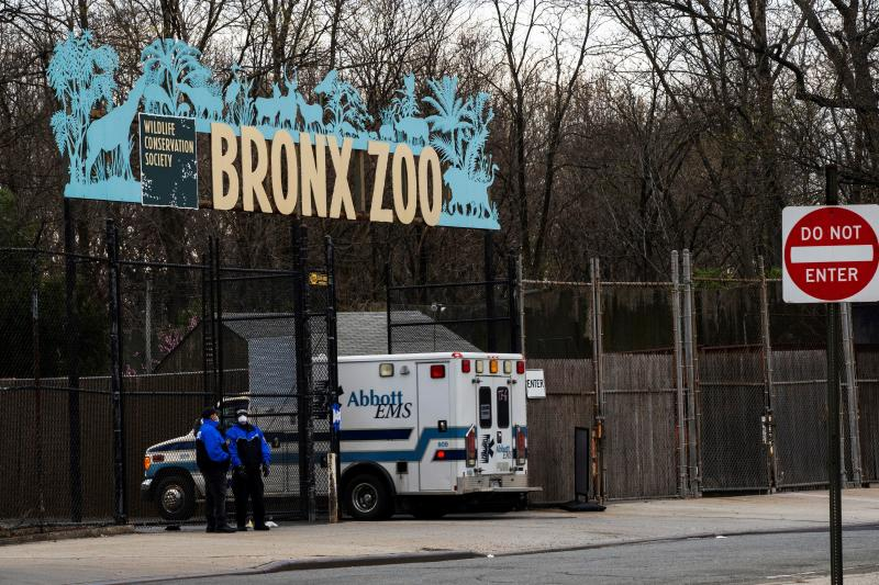 An ambulance goes inside the Bronx Zoo as the outbreak of the coronavirus disease (COVID-19) continues in the Bronx borough of New York City, New York, U.S., April 5, 2020. REUTERS/Eduardo Munoz