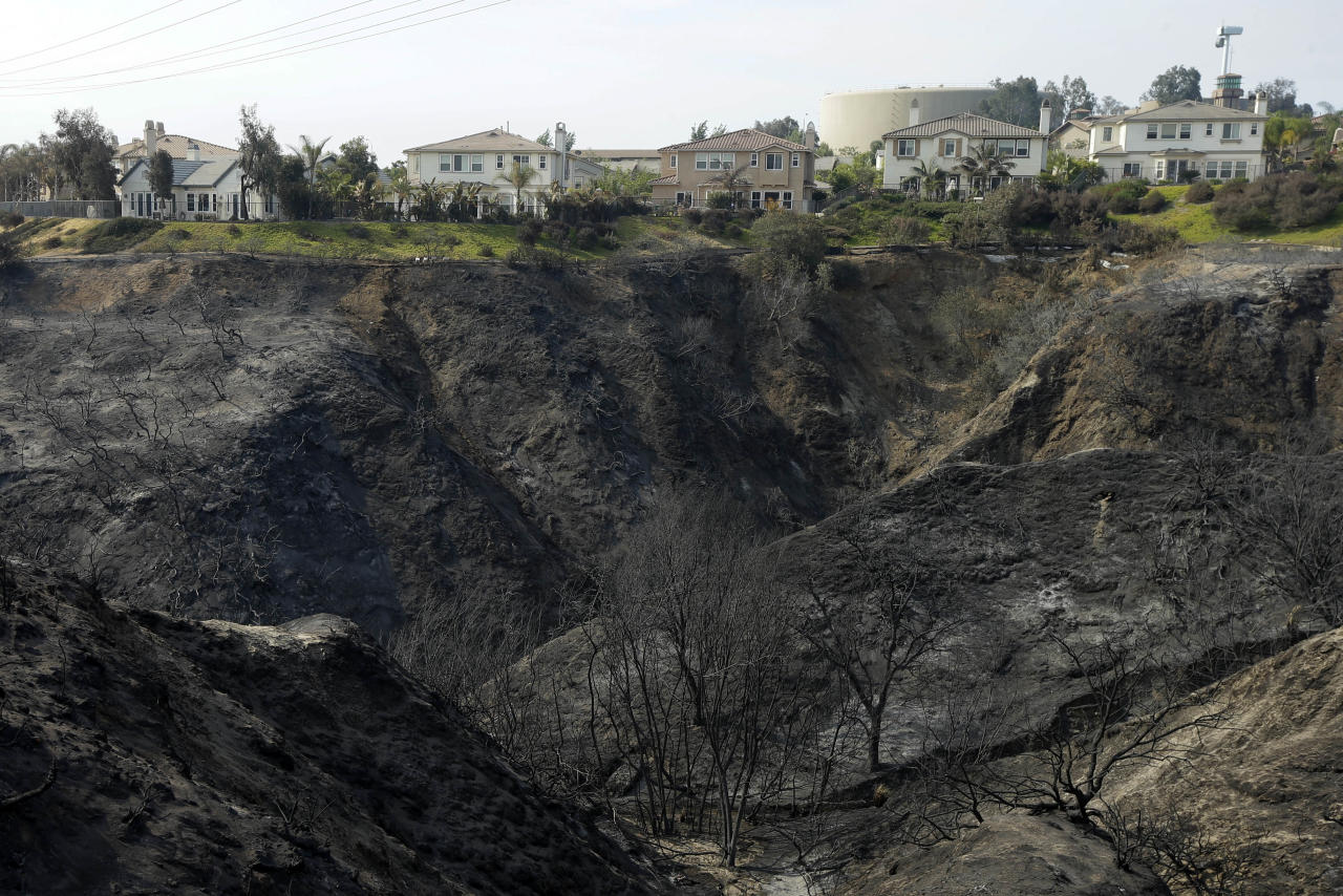 Houses sit untouched above a canyon ravaged by wildfire Friday, May 16, 2014, in Carlsbad, Calif. Some evacuation orders were lifted early Friday in an area near the fiercest of several wildfires in San Diego County, as crews building containment lines around the blazes hoped cooler temperatures will help them make further progress. (AP Photo/Gregory Bull)