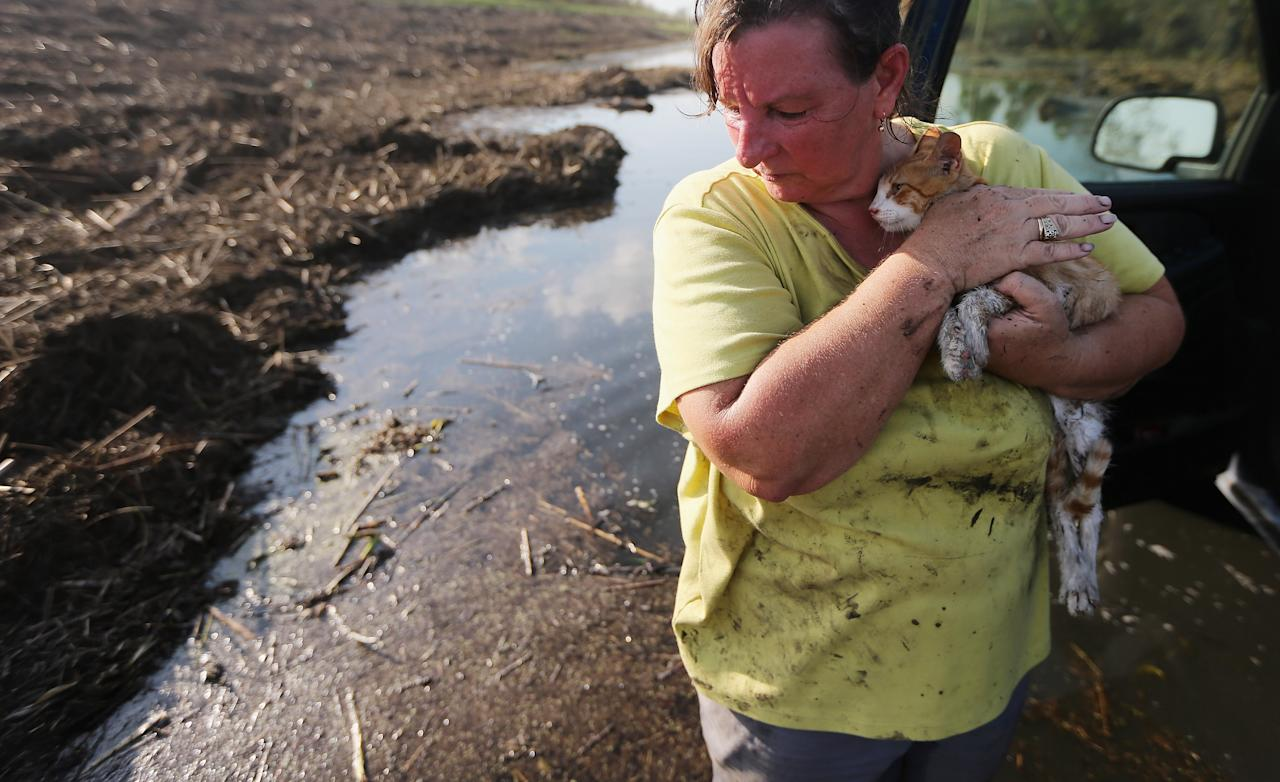 Melanie Martinez holds the family cat, which they have renamed Isaac, after salvaging items from their flooded home in Plaquemines Parish on September 3, 2012 in Braithwaite, Louisiana. Martinez, along with her husband and her mother, was forced to ride out the storm in the home when their car broke down. The house quickly flooded and they were rescued by a neighbor who was able to break into their attic to save them. They only were able to rescue Isaac today who survived six days without food at the flooded home. This is the fifth home Martinez has had destroyed due to hurricanes in Louisiana. Damage totals from the hurricane could top $2 billion more than 125,000 customers are still without power six days after the storm made landfall.  (Photo by Mario Tama/Getty Images)