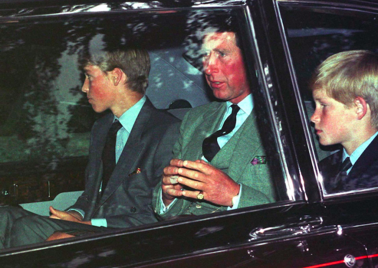 William and Harry were in a state of confusion in the hours after Princess Diana's death (Rex)