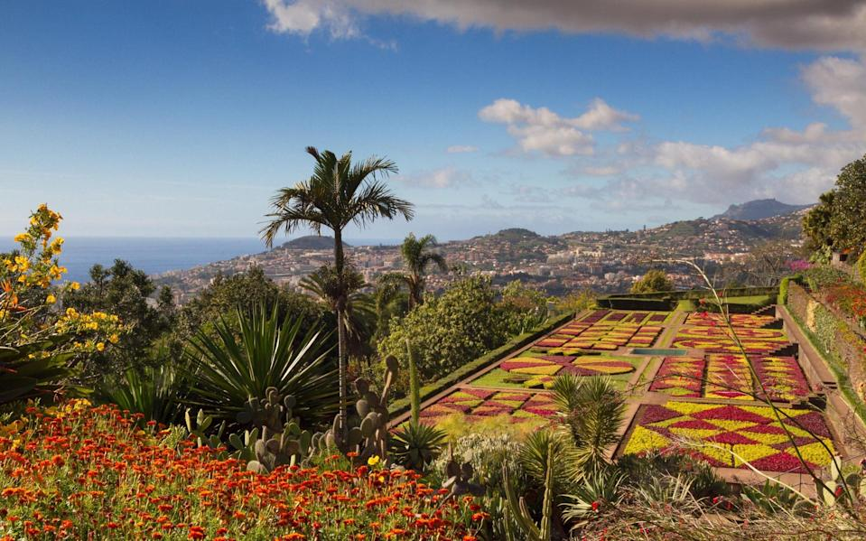 Funchal's botanical gardens - Getty