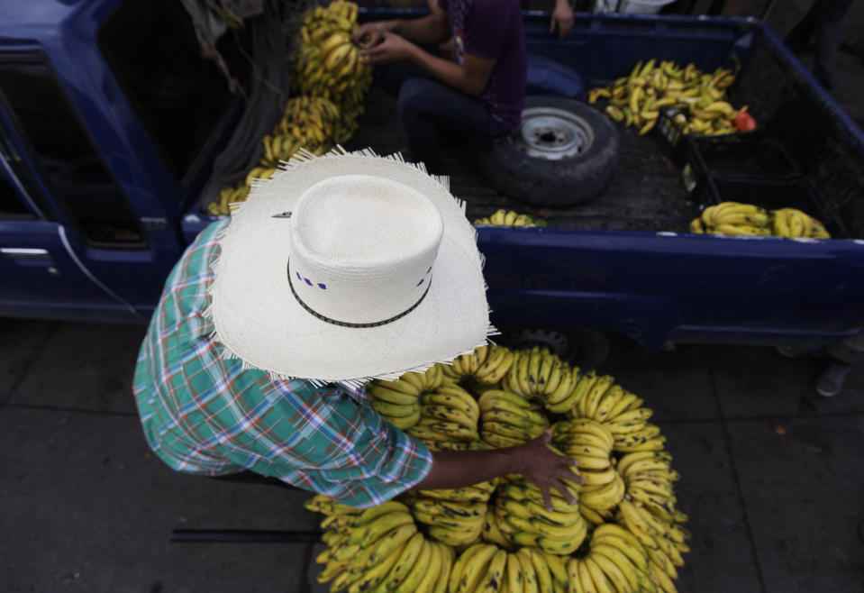 A man buys bananas from a pickup truck on a street in Tegucigalpa November 23, 2013. Honduras is heading for a close presidential vote on Sunday as the wife of an ousted leftist leader fends off a late surge from the ruling party heavyweight and both vow a crackdown on drug violence that has made the country the world's murder capital. The winner of Sunday's election will have to steady state finances, clean up a corrupt police force and fight drug gangs that have given the impoverished country the highest homicide rate in the world of more than 85 people per 100,000.    REUTERS/Jorge Cabrera (HONDURAS - Tags: ELECTIONS POLITICS SOCIETY)