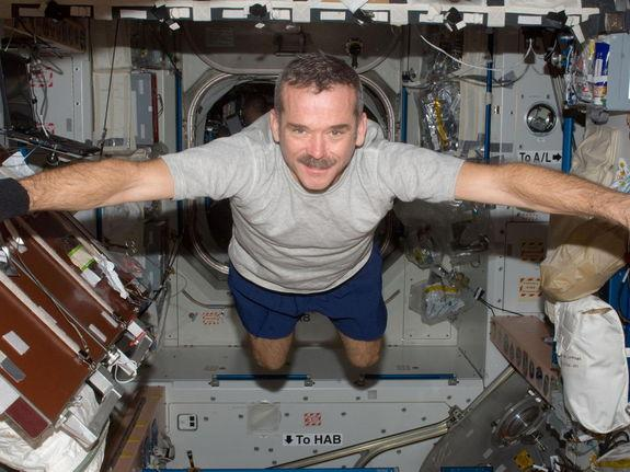 What's Next for Astronaut Chris Hadfield?