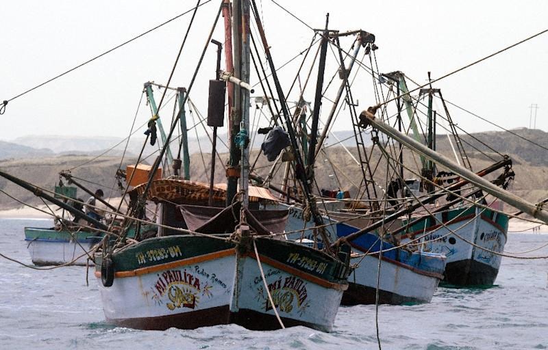 GlobalFishingWatch.org allows people to trace the paths of commercial fishing vessels and make sure boats haven't strayed into marine protected areas (AFP Photo/Cris Bouroncle)