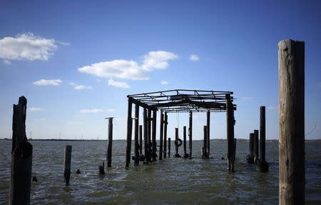 A structure that used to be a boat house in the former Brownwood neighborhood, which was abandoned due to rising sea waters, is seen in Baytown, Texas March 6, 2014. REUTERS/Rick Wilking