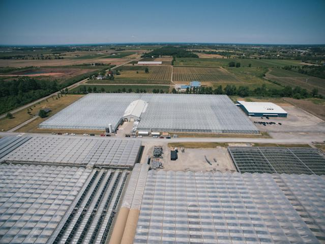 Tweed Farm's property in Niagara-on-the-Lake, Ont. (Canopy Growth Corp.)