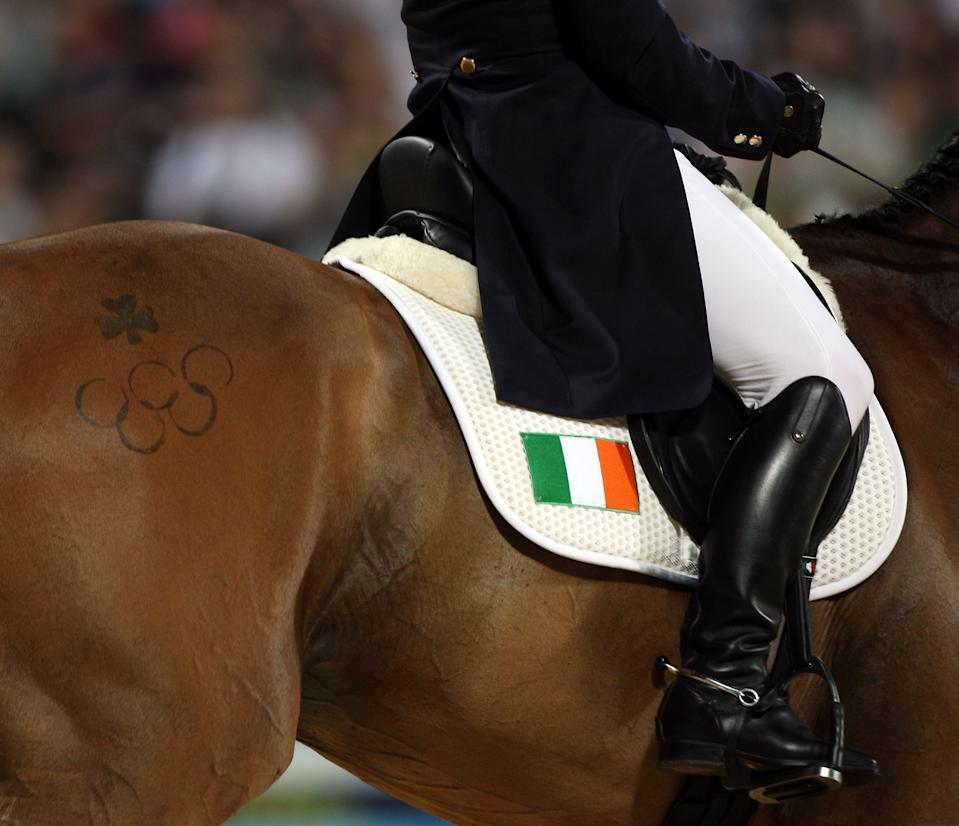 Olympic rings and an Irish Shamrock are displayed on the hindquarters of Louise Lyons' mount Watership Down as they perform their Dressage Test at the Equestrian event held at the Hong Kong Olympic Equestrian Venue in Sha Tin during Day 1 of the Beijing 2008 Olympic Games. (Photo by Julian Herbert/Getty Images)