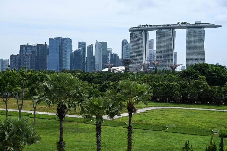 As alarm about global warming has grown and urban development goals have shifted, replanting initiatives have sprouted in cities around the world
