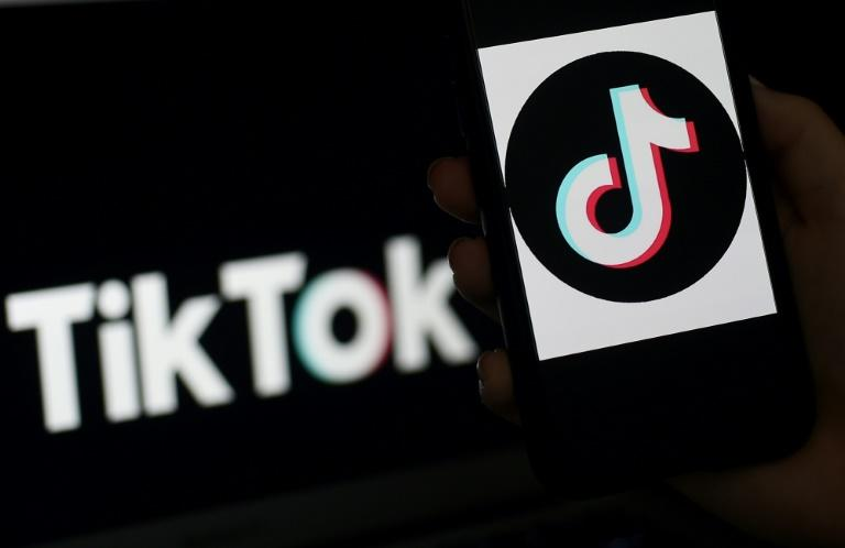 AFP launches fact-checking programme with TikTok