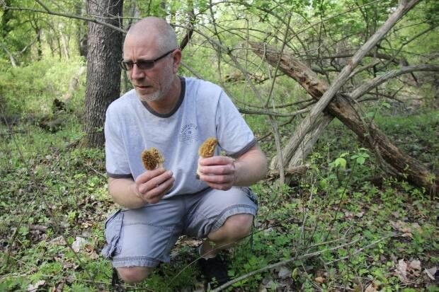 Windsor, Ont., resident Brooke Robinson agreed to take CBC News out to his family's morel patch.
