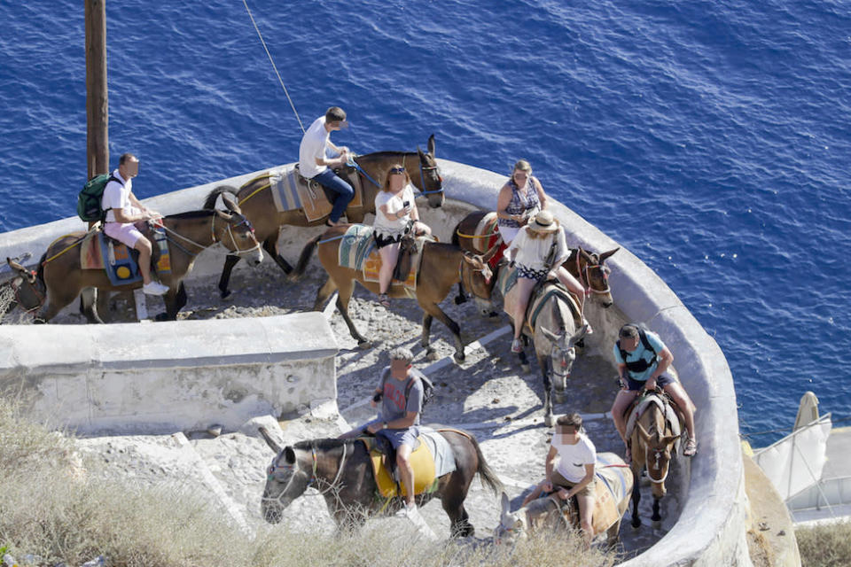 Donkey rides are popular with tourists at Santorini (Picture: Caters)