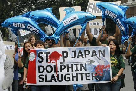 Activists hold dolphin-shaped balloons and banners urging the Japanese government to end dolphin killings, during a protest in front of the Japanese embassy in Manila