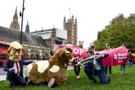 A man imitates the injection of hormones into a man in a cow costume, in Parliament Square, as part of a day of action against the US trade deal, ten days before the US Presidential election, in London, Saturday, Oct. 24, 2020. There will will be protests held nationwide against a proposed US trade deal, opposed by a number of organisations including Global Justice Now and Stop Trump Coalition. (AP Photo/Alberto Pezzali)