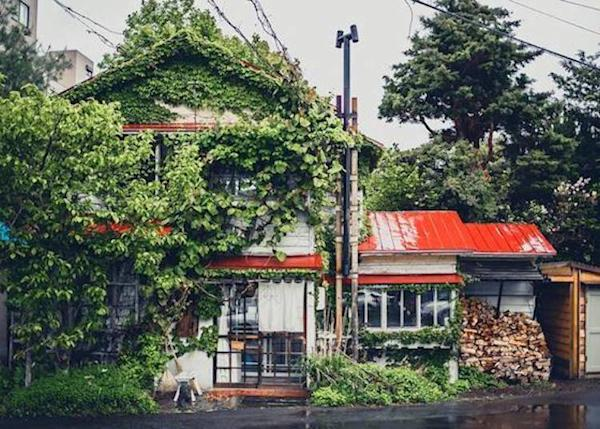 """▲ """"Morihiko"""" located in an old residential house (Photo provided by Atelier Morihiko)"""