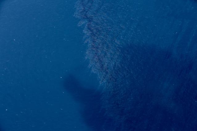 <p>An oil slick is seen on the surface of the East China Sea left by oil leaking from the sunken Iranian tanker ship Sanchi, Jan. 15, 2018. Several oil slicks have been found in waters around a sunken Iranian tanker ship in the East China Sea in a spill that is growing and whose potentially major impact on the marine environment is still being assessed. (Liu Shiping/Xinhua via AP) </p>