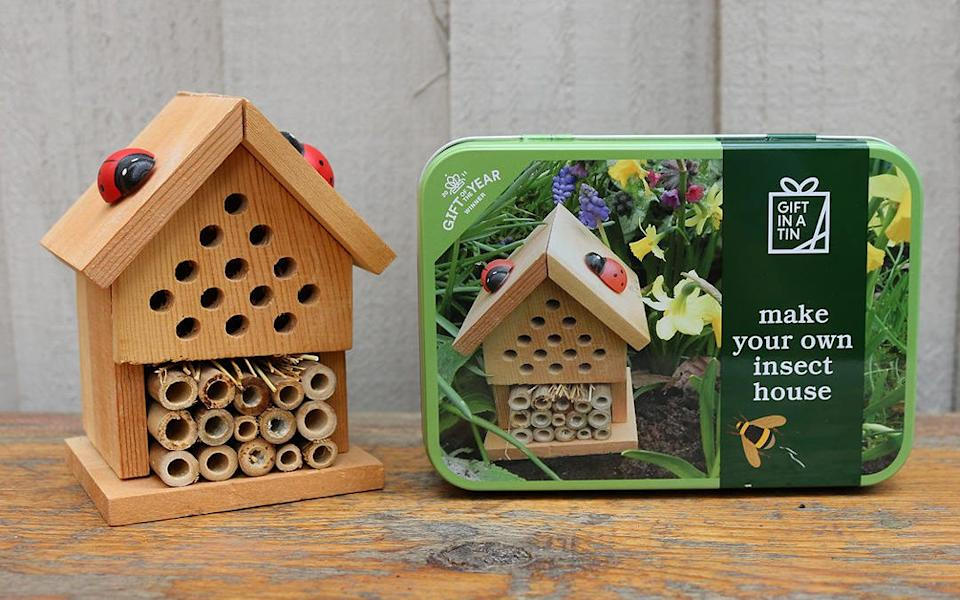Apples To Pears Make Your Own Insect House - John Lewis & Partners