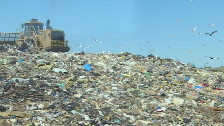 It's never been easier to keep waste from landfills, but are you doing your part?