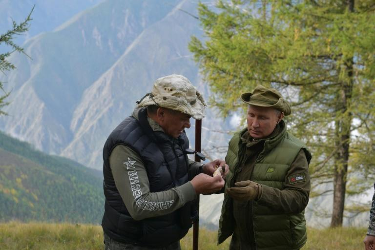 Russian President Vladimir Putin (R) and Defence Minister Sergei Shoigu picked mushrooms in Siberia at the weekend (AFP Photo/Alexey DRUZHININ)