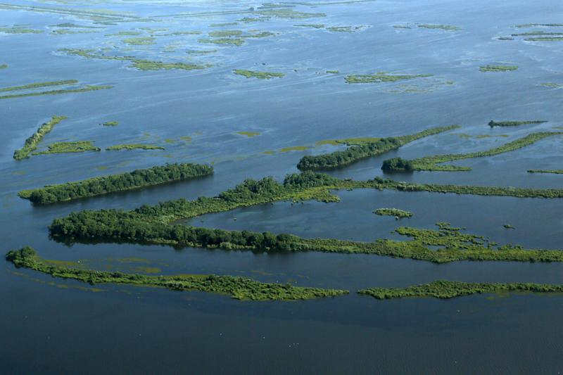 Climate Change Effects: Louisiana's Coast Is Sinking More Rapidly Than Anyone Thought, According to Study