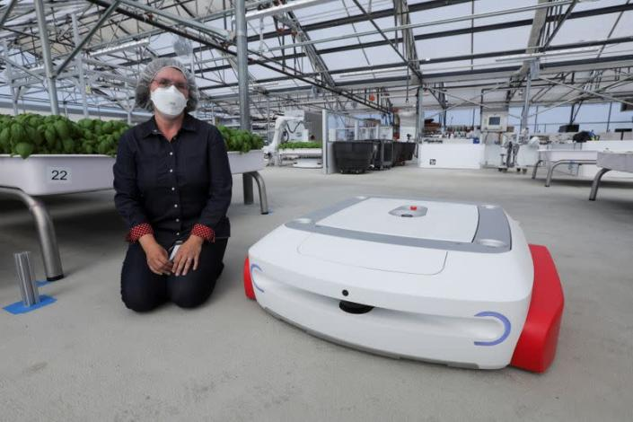 Sarah Osentoski, senior vice president of engineering at Iron Ox, kneels next to the self-driving robot Grover at the Silicon Valley company's greenhouse in Gilroy, California
