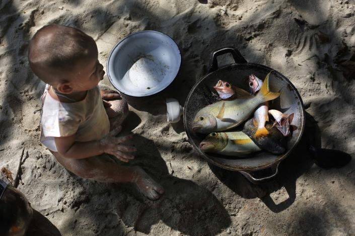 In this Sunday, Feb. 9, 2014 photo, a Moken child, nomads of the sea, looks at a pan with freshly caught fish for lunch on Island 115 in Mergui Archipelago, Myanmar. The child is a part of a Moken group of several families spending 10 days hunting for squid and whatever else they can collect before returning to their village on another island toward Myanmar's southwestern coast with a lacework of 800 islands, what is known as the Lost World. Isolated for decades by the country's former military regime and piracy, the Mergui archipelago is thought by scientists to harbor some of the world's most important marine biodiversity and looms as a lodestone for those eager to experience one of Asia's last tourism frontiers before, as many fear, it succumbs to the ravages that have befallen many of the continent's once pristine seascapes. (AP Photo/Altaf Qadri)