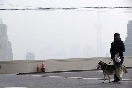 A woman wearing a face mask walks with her dog on a bridge in front of the financial district of Pudong amid heavy smog in Shanghai, China, December 15, 2015. REUTERS/Aly Song