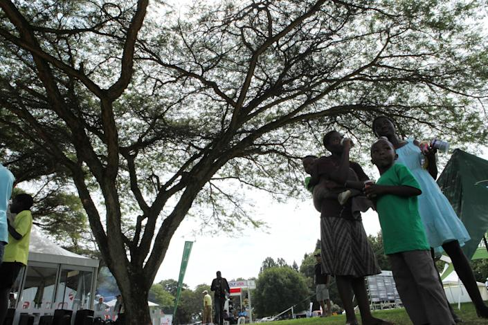 """in this photo taken Tuesday, June 4, 2013, a family seeks shade beneath the indigenous msasa trees at the Royal Harare Golf Club. Indigenous trees are going to stay but """"foreign"""" trees such as fir, pine and eucalyptus trees, that were planted by early white settlers to remind them of their distant origins are now being rooted out and being replace by indigenous plants. (AP Photo/Tsvangirayi Mukwazhi)"""