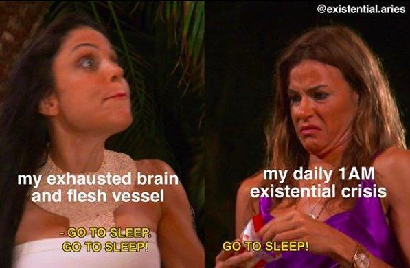 "screen grabs of two people from Real Housewives of New York saying ""Go to sleep"" repeatedly, with text over the left image that says ""my exhausted brain and flesh vessel"" and on the right ""my daily 1AM existential crisis"""