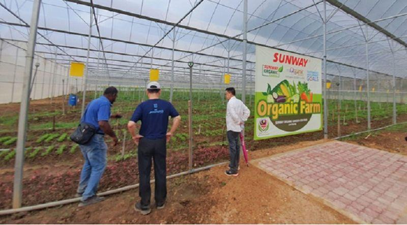 The Sunway Organic Farm in Ipoh strives to make a difference in increasing food security in Malaysia. On the right is Sunway Group founder and chairman Tan Sri Dr Jeffrey Cheah with executive director of the chairman's office, Ong Pang Yen (centre). ― Picture courtesy of Sunway