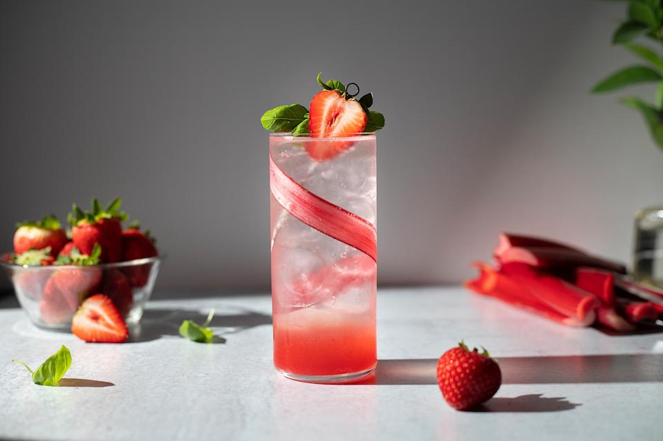 <p>This strawberry-rhubarb honey shrub cocktail celebrates the arrival of spring with a tangy, refreshing gin cooler. The sweet-and-sour flavors of fresh strawberries and rhubarb are enhanced by honey in a quick-cooked shrub syrup.</p>