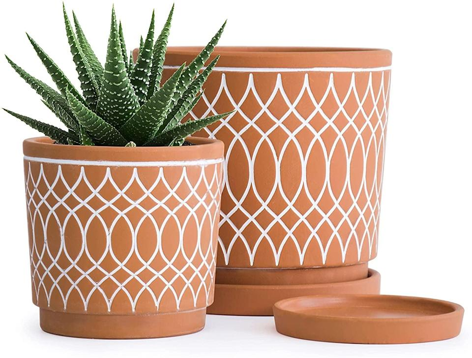 <p>Your plants will look stunning in these <span> Terracotta Plant Pots With Line Pattern Design</span> ($25 for two). It's a classic find that has a stunning white detailing that will add character to your plant collection. </p>