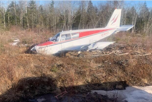 Walter Read came across a downed Piper aircraft when out for a drive with his daughters looking for deer near Rockport, N.B. (Walter Read - image credit)