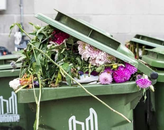 Residents diverted 300 tonnes of food and yard waste from the landfill in the first six month of the organic pilot project. (John Cullen - image credit)
