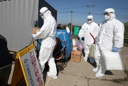 Quarantine officials wearing protective gear enter a pig farm involved in African swine fever in Paju